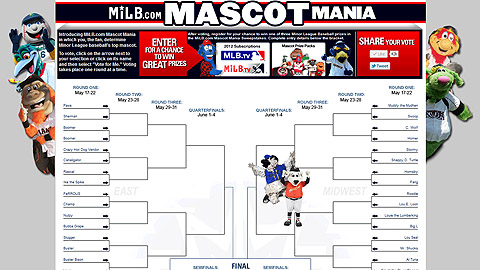 Fans will vote in a 64-mascot bracket that offers facts and background on the unique creatures.